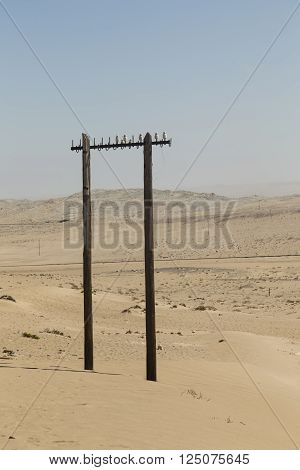 old power pole in the desert near Kolmanskop Namibia