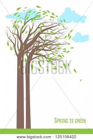 Spring time background with trees and sky for design card, banner,ticket, leaflet and so on. Place for text.