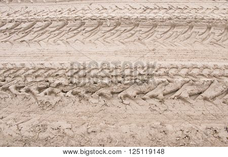 Tractor traits on dirt road in a country