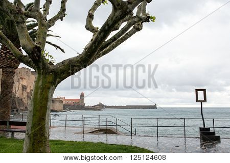 Collioure city and the bay in France