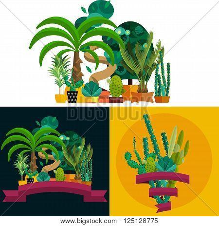 Desert plant. Illustration of palm trees on white background. Desert houseplants in pott. Set of plants and trees in desert. Potted tropical plants. Garden trees, plants from desert.