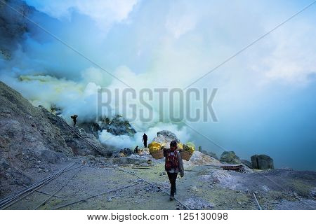 Java Indonesia - April 4 2016: The workers were carrying sulfur ore in Kawah Ijen Vacano. The Ijen volcano complex is a group of stratovolcanoes in the Banyuwangi Regency of East Java Indonesia.