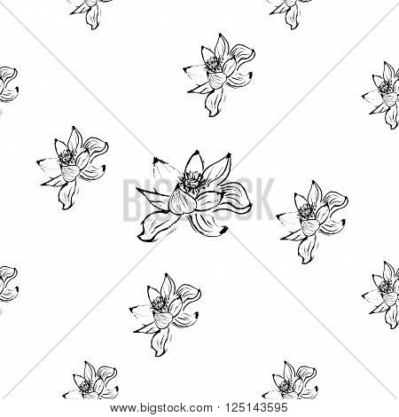Seamless pattern with lotus flowers. White background. Gray scale. Stock vector.