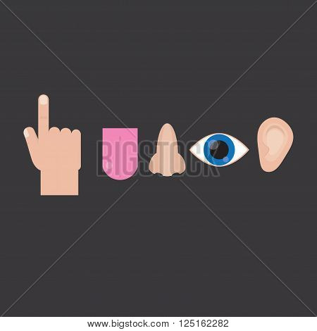 Senses: sight touch smell hearing taste. Senses in the flat style on gray background. Icons senses. Vector.
