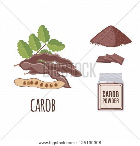 Superfood carob set in flat style: carob seeds, powder. Organic healthy food. Isolated objects on white background. Vector illustration