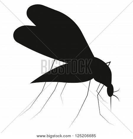 Mosquito silhouette isolated on white background. Set icon