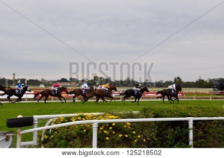 BURSWOOD,WA,AUSTRALIA-MAY 30,2014: Jockeys racing horses around the track at the Belmont Park Racecourse in Burswood, Western Australia.