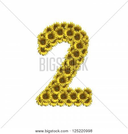 Isolated Sunflower Number 2