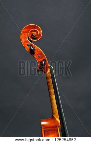 Head of a violin on black background