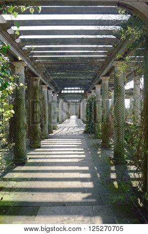 Wooden garden passage way in formal garden