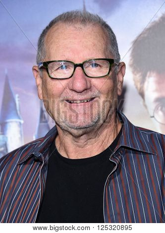 LOS ANGELES - APR 05:  Ed O'Neill arrives to the Wizarding World of Harry Potter Opening  on April 05, 2016 in Hollywood, CA.