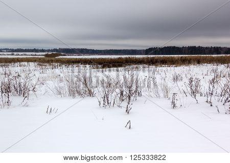 snow covered field under gloomy gray skies
