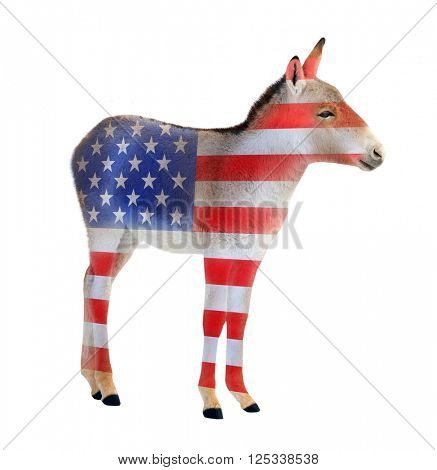 Democrat donkey colored as a american flag isolated on white background. Donkey going to elections. Digital artwork on political theme.