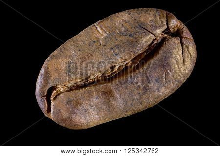 Coffee bean isolated on black background. Big size close up photo of single bean