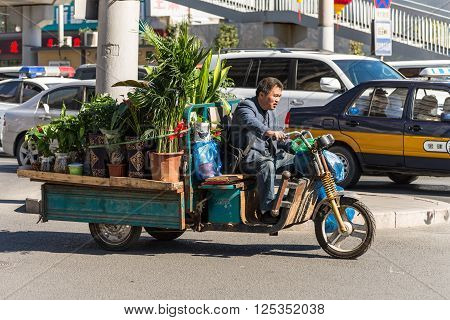 Beijing China - October 15 2013: Man transporting potted plants by motor tricycle on a street in Beijing China. These motorized tricycles are a popular means for transporting goods around the ciity of Beijing and many other places in China.