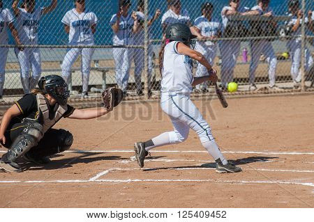 Strong softball player in black uniform expecting the ball.