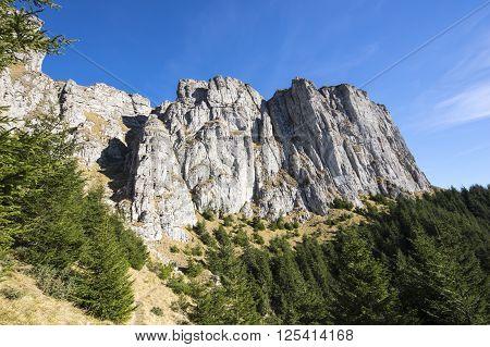 Autumn colors on Romanian Carpathians mountain landscape