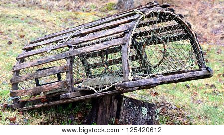 Older and weathered wooden lobster trap, leaning on tree stump.