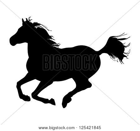 Graphic image of a galloping horse. Black silhouette horse on white background. Vector illustration