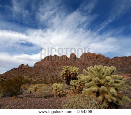 Desert Landscape With Cactus, Mountains And Blue Sky