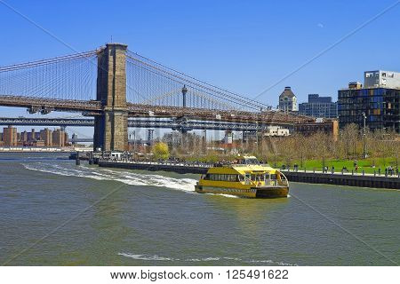 NEW YORK USA - APRIL 25 2015: Ferry at Brooklyn bridge and Manhattan bridge over East River. Tourists on board. Bridges connect Lower Manhattan with Brooklyn of New York USA. View on Brooklyn side.