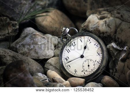 Pocket watch underwater with stones and plant