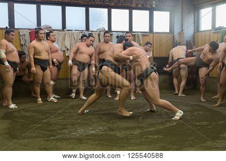 Tokyo, Japan - December 21, 2014: Japanese sumo wrestler training in their stall in Ryogoku district.
