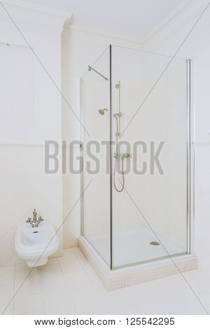 White Elegant Shower Room