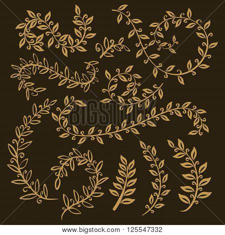 Leaves Set. Vector Leaf, Outline Drawing In Vintage Style. Tree Branches. Graphic  Illustration, Par