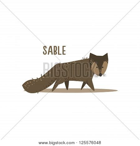 Sable Drawing For Arctic Animals Collection Of Flat Vector Illustration In Creative Style On White Background
