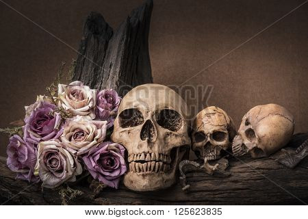 Still life painting photography with three human skulls and roses on timber background love and horror halloween darkness concept