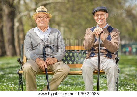 Two cheerful elderly gentlemen sitting on a wooden bench in a park on a sunny day