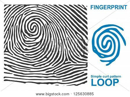 Fingerprint vault. Black fingerprint. Fingerprint shape. Fingerprint secure. Fingerprint identification. ID fingerprint. Fingerprint pressure. Vector Fingerprint.