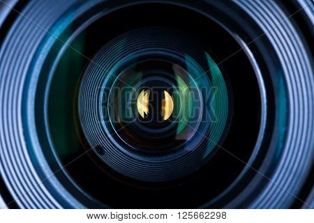 SLR Photography Lens Macro Extreme Close Up