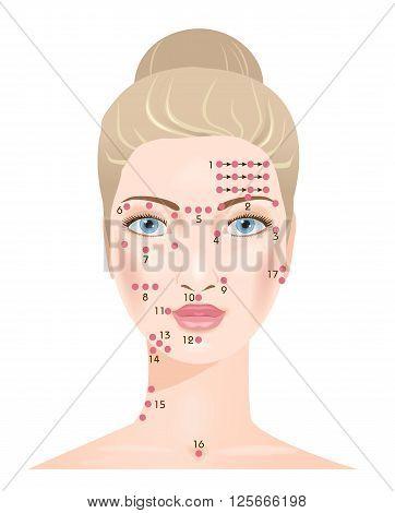 Shiatsu face massage points. Portrait of beautiful woman. Vector illustration