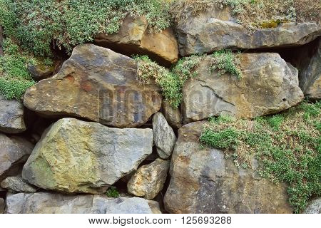 Rocks with green moss background close up