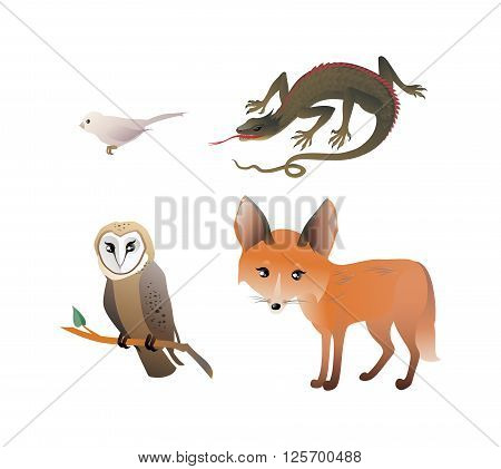 Forest Animals Set. The vector illustration of the Forest Animals - Red Fox, Owl, Bird, Lizard. Set of Cute Animals isolated on White Background. No Transparency!