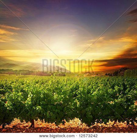 Beautiful Sunset.Nature Landscape