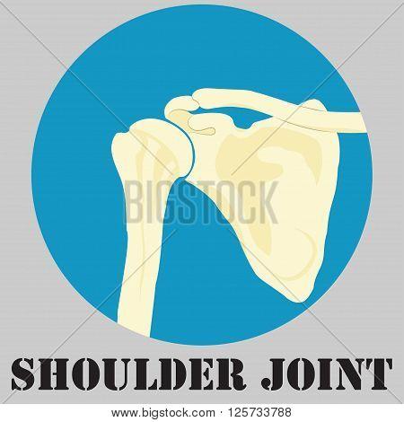Human shoulder joint medicine clinic symbol design spine diagnostics center flat design vector