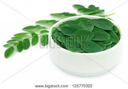 Edible moringa leaves in a white bowl