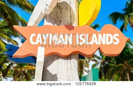 Cayman Islands signpost with palm trees