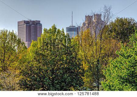 Atlanta cityscape buildings in between green  trees