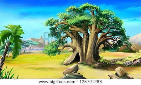 the African baobab in a summer day.