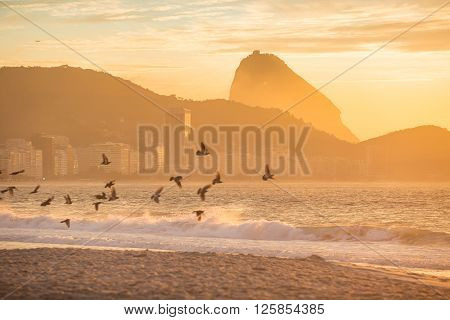 Sunrise View Of Copacabana And Mountain Sugar Loaf