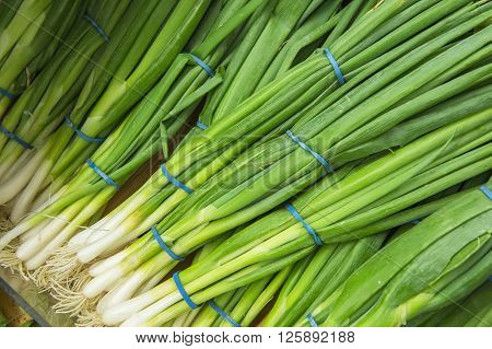 Bunches Of Green Onions From Market Shelves Real With Flaws And