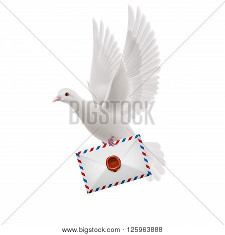 White pigeon flying with letter in beak