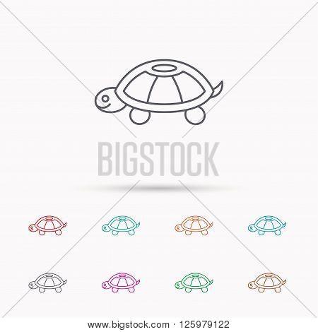 Turtle icon. Tortoise sign. Tortoiseshell symbol. Linear icons on white background.