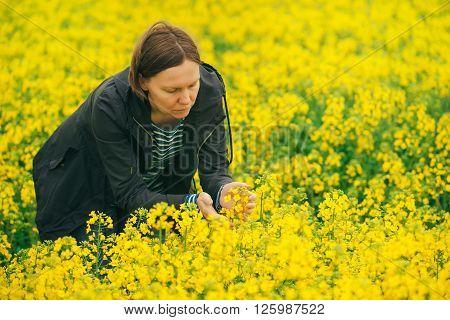 Woman examining oilseed rape flower in field of blooming rapeseed.