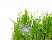 compass in green grass isolated on white background poster