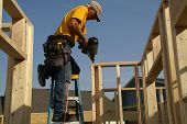 construction worker nailing top of frame to studs using nail gun poster